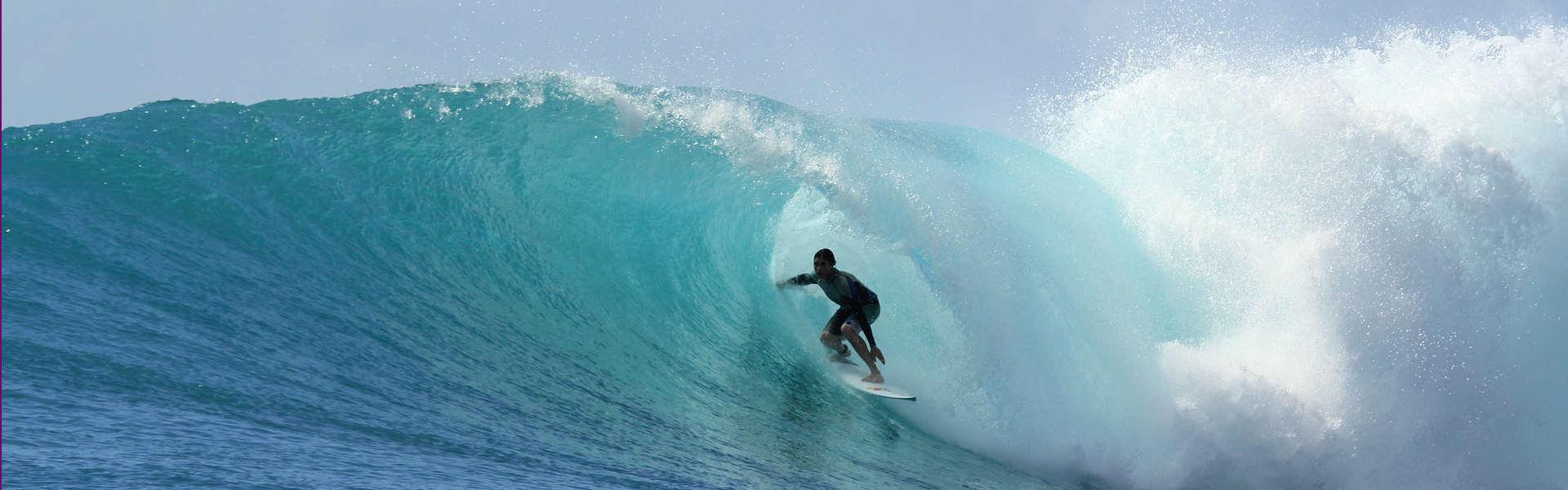 szybki-jezyk-angielski-elk-opanuj-w-6-miesiecy-surfer